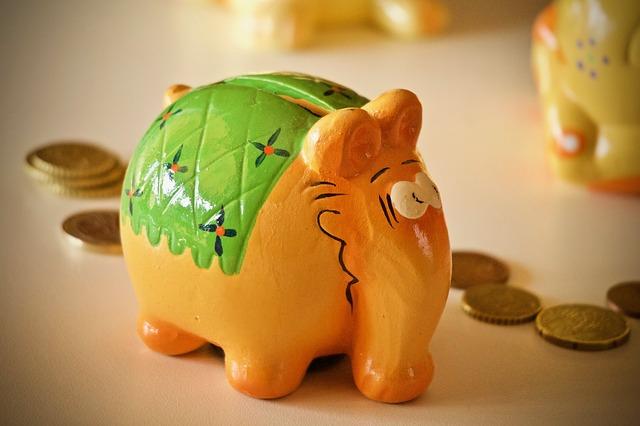Prasátko, šetření, finance.